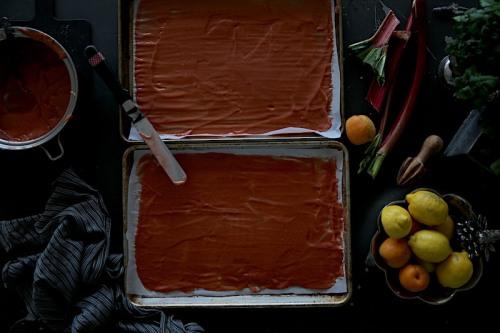 Rhubarbappricot7