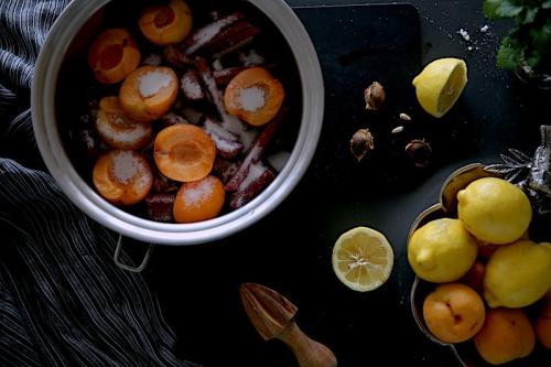Rhuubarb-appricot5